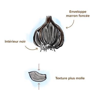 Apparence-ail-noir