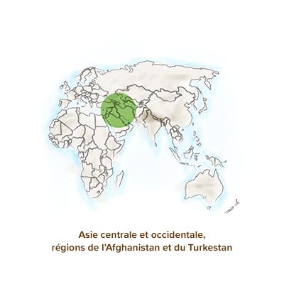 Origine_geographique_amande