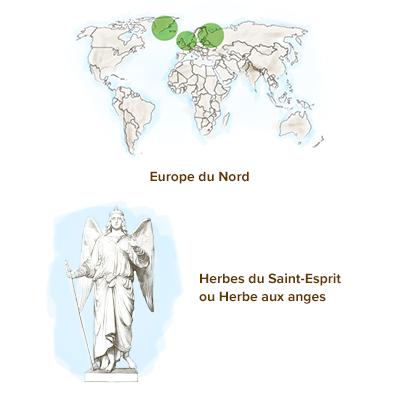 /Origine-angelique