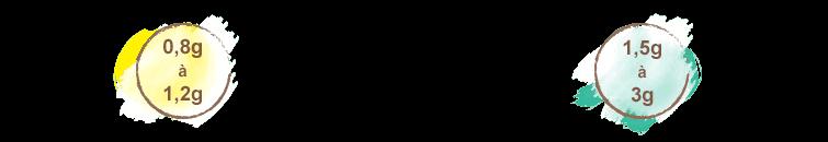 posologie curcuma