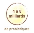Posologie-ferments-lactiques-probiotiques