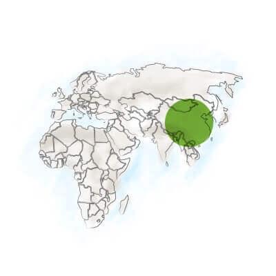 localisation ginkgo biloba