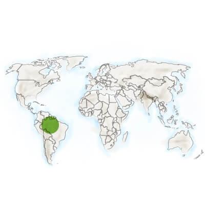 localisation guarana