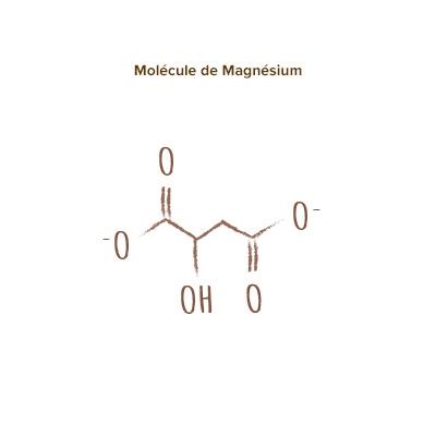 apparence magnésium