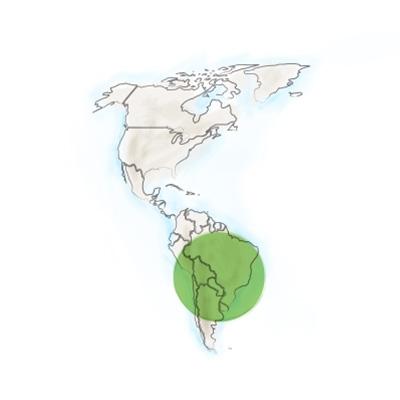 origine_geographique-du-maracuja