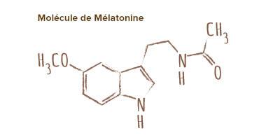 molécule mélatonine