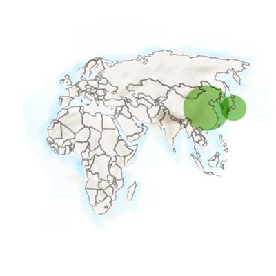 origine_geographique_du_reishi