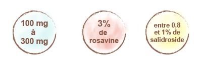 posologie-rhodiola