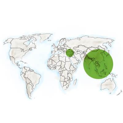 localisation thé vert