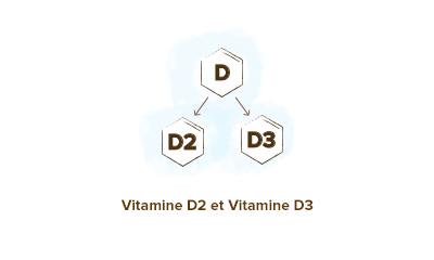 Apparence--Vitamine-D