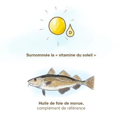Origine-Vitamine-D-decouverte